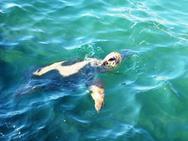 Σε εξέλιξη η ωοτοκία της θαλάσσιας χελώνας Caretta caretta στο Εθνικό Πάρκο Υγροτόπων Κοτυχίου Στροφυλιάς!