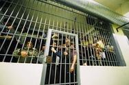 Πάτρα: Ανησυχούν στις φυλακές του Αγίου Στεφάνου για τα κρούσματα φυματίωσης