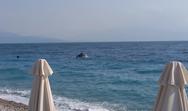 Στην Ακράτα τα δελφίνια κόντεψαν να βγουν στη στεριά για… καφέ (video)