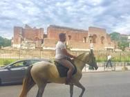 Πάτρα: Βολτάροντας με άλογο απέναντι από το Ρωμαϊκό Ωδείο