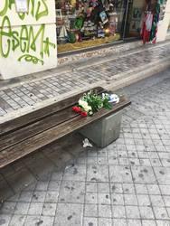 Πάτρα: Tα τριαντάφυλλα στο σημείο της Ρήγα Φεραίου, όπου καθόταν ο Πολωνός μουσικός! (pic+video)