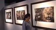 Σάλος στην Κίνα με έκθεση που δείχνει Αφρικανούς δίπλα σε άγρια ζώα! (video)
