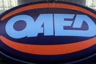 Προκήρυξη ΟΑΕΔ για 305 προσλήψεις - Δώθηκαν διευκρινήσεις για τα προσόντα