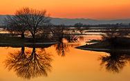 Λίμνη Κερκίνη - Ένα ονειρικό τοπίο στην Ελλάδα (φωτο)