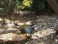 Πάτρα: 'Τρέμουν' τις πλημμύρες στις Ιτιές και στις περιοχές γύρω από τον Γλαύκο!