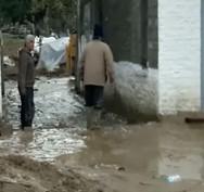 Αγρίνιο: Άγριο ξύλο στην κοινότητα Ζευγαρακίου προς τον πρόεδρο (video)