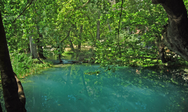 Λάδωνας Ποταμός - Ο Υδάτινος «δεσμός» των νομών Αχαΐας και Αρκαδίας (pics)