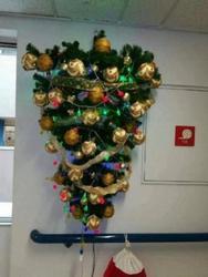 Στο Πανεπιστημιακό Νοσοκομείο της Πάτρας στόλισαν το  δέντρο ανάποδα!