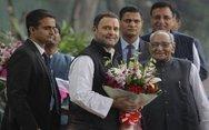 Ινδία - Ο Ραχούλ Γκάντι πρόεδρος του κόμματος του Κογκρέσου