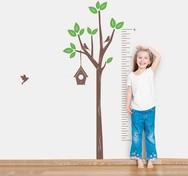 Πέντε παράγοντες που επηρεάζουν το ύψος του παιδιού