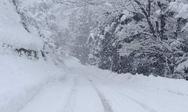 Σοκ στις Δάφνες Αιγίου - 80χρονη βρέθηκε νεκρή, θαμμένη στο χιόνι!
