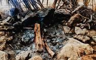 """Χρήστος Ορτέντζιο - O Πατρινός που βρέθηκε πίσω από τις κάμερες του """"Survival Secret"""" (φωτο)"""