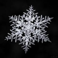 Η εντυπωσιακή ομορφιά των χιονονιφάδων (φωτο)