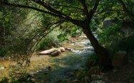 Νέδα - Το θηλυκό ποτάμι με φόντο το μαγευτικό τοπίο της Πελοποννήσου! (φωτο)