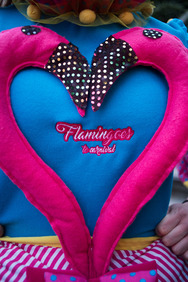 Group 14: Flamingoes To Carnival