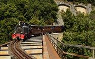 Ένα τρένο... τουριστικό αξιοθέατο στο Πήλιο! (φωτο)