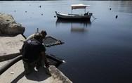 ΤΕΕ: Εκδήλωση για την προστασία των ελληνικών θαλασσών