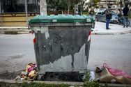 Πετρούπολη - Τελικά η κάμερα ασφαλείας 'έπιασε' τον γείτονα που κατέβαζε τα σκουπίδια