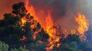 Δυτική Ελλάδα: Το WWF Ελλάς ξεκινά μια νέα τοπική εκστρατεία ενημέρωσης των πολιτών