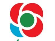 Το σύμβολο του Κινήματος Αλλαγής - Ένα κόκκινο τριαντάφυλλο με ένα μπλε πέταλο!