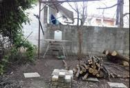 Φρίκη στην Καρδίτσα - Άνδρας παγίδευσε γάτα και την χτύπησε με ψαροντούφεκο! (φωτο)