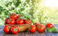 Πέντε λαχανικά-φρούτα που περιέχουν δηλητήριο