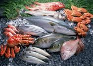Τα ψάρια που πρέπει να αποφεύγει μια γυναίκα που θηλάζει