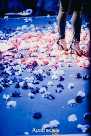 """Η Δέσποινα Βανδή """"τα 'δωσε όλα"""" για το κοινό της Πάτρας (φωτο+video)"""