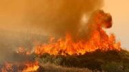 Συνεχίζεται η μάχη με τις φλόγες στην Ηλεία (video)