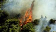 Καλάβρυτα: Eργαστήριο για την πρόληψη δασικών πυρκαγιών