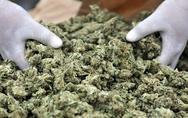 Πάτρα: Βρέθηκαν στα χέρια της αστυνομίας για διακίνηση ναρκωτικών