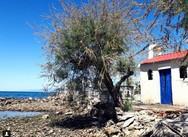 Κάπου στην Πάτρα - Όλη η Ελλάδα σε μία εικόνα στο instagram!