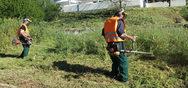 Πάτρα: Προωθούνται εργασίες κοπής χόρτων σε πλατείες και σχολεία