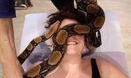 Μασάζ από... φίδι (video)