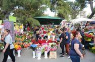 Πάτρα: Τον...είδαν τον Μάη τα ανθοπωλεία στην γιορτή των λουλουδιών (pics)
