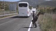 Το νέο βίντεο κλιπ του Πατρινού μουσικού Βασίλη Ράλλη