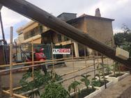 Σπάρτη: Σάπια κολόνα κατέρρευσε σε κεντρικό δρόμο (pics)