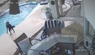 Σκύλος βούτηξε σε πισίνα για να σώσει το φίλο του (video)