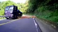 Φορτηγό γεμάτο με καρπούζια, άδειασε στο δρόμο! (video)