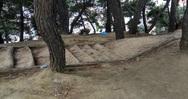 Πριν από δέκα μέρες το Δασύλλιο της Πάτρας καθαρίστηκε - Δείτε πως είναι τώρα (pics)