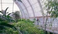 Ένας τροπικός παράδεισος με... 10.000 φυτά (video)