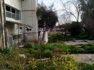 Πάτρα: Μίνι καταυλισμός από Ρομά στην Αγυιά, στην είσοδο της Πλαζ
