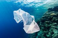 ΚοινοΤοπία: Τις πλαστικές σακούλες μιας χρήσης τις μειώσαμε!