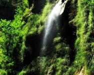Σχεδόν 3 ώρες από την Πάτρα 'κρύβεται' ένας μοναδικός καταπράσινος 'παράδεισος' (video)