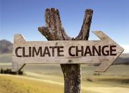 Τα πρώτα ζώα της Γης συνέβαλαν στην κλιματική αλλαγή
