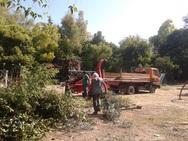 ΟΙΚΙΠΑ: Εξαιρετικός ο καθαρισμός του Σκαγιοπουλείου