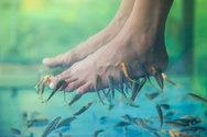 Νεαρή έχασε όλα τα νύχια των ποδιών της μετά από σπα με ψάρια