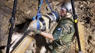 ΓΕΣ: Κοινωνική προσφορά Στρατού Ξηράς, στον πομέα της έρευνας - εκκαθάρισης υπόπτων χώρων (pics)