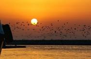 Λίγο πριν ο ήλιος βυθιστεί στον Πατραϊκό κόλπο