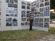 Αχαΐα: Πραγματοποιήθηκε η γιορτή Πολιτισμού, Ελιάς και Λαδιού (φωτο)